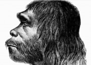 Much of what people have is because Neanderthal genes gave Homo sapiens the ability to adapt to the environment.