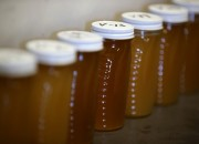How beneficial is honey as a miracle food? Find out its surpising healing properties.