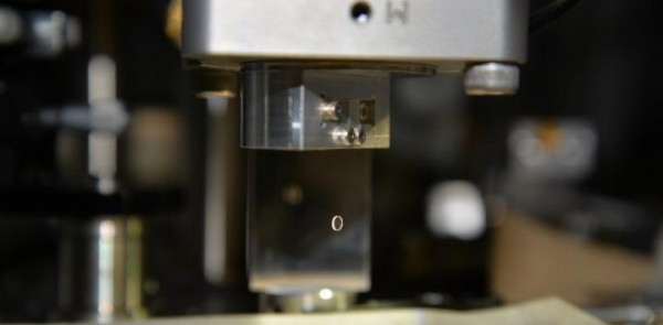 Development of a Displacement Sensor to Measure Gravity of Smallest Source Mass Ever (IMAGE)