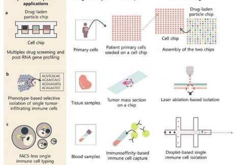 Perspectives on Potential Biochips Used for Next Generation Sequencing for Promising Applications in (IMAGE)