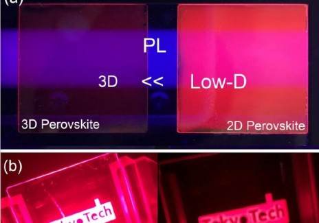 Photoluminescence and Electroluminsecence in Low-Dimensional and 3D Perovskite-Based Devices (IMAGE)